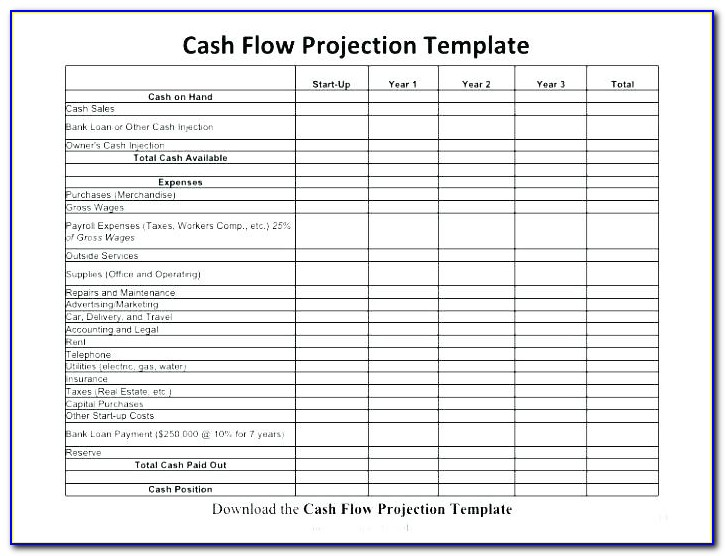 Pro Forma Cash Flow Projection Template