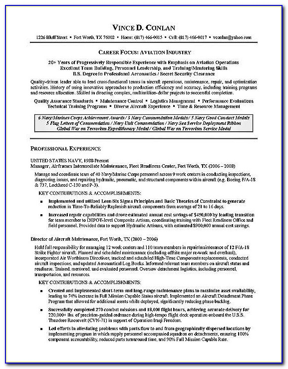 Professional Aviation Resume Template