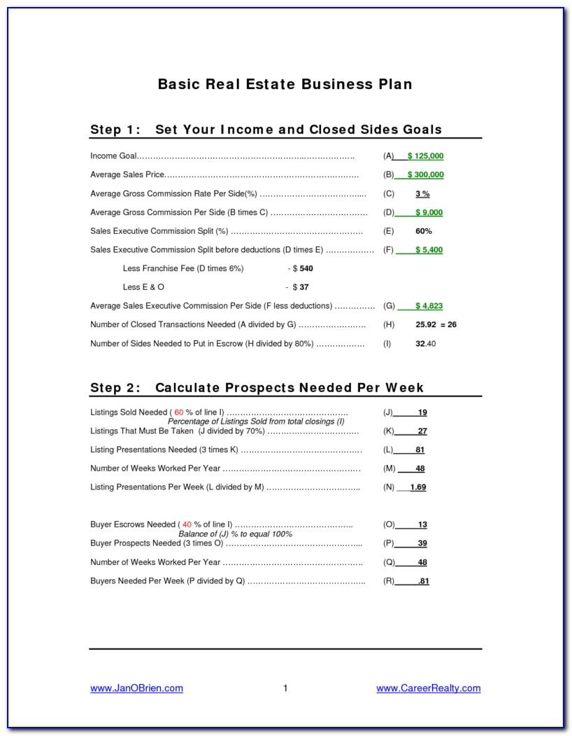 Real Estate Agent Business Plan Template Pdf