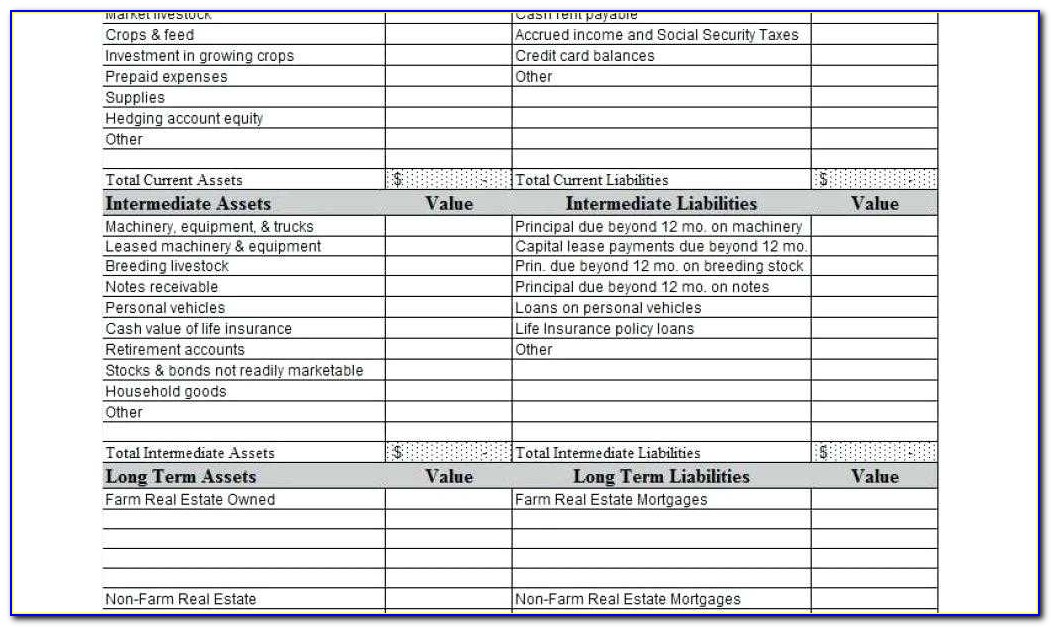 Real Estate Agent Expense Tracking Spreadsheet Elegant Home Balance Sheet Template Household Vancouvereast Co