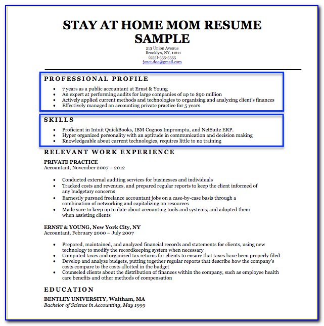 Resume Builder For Stay At Home Mom