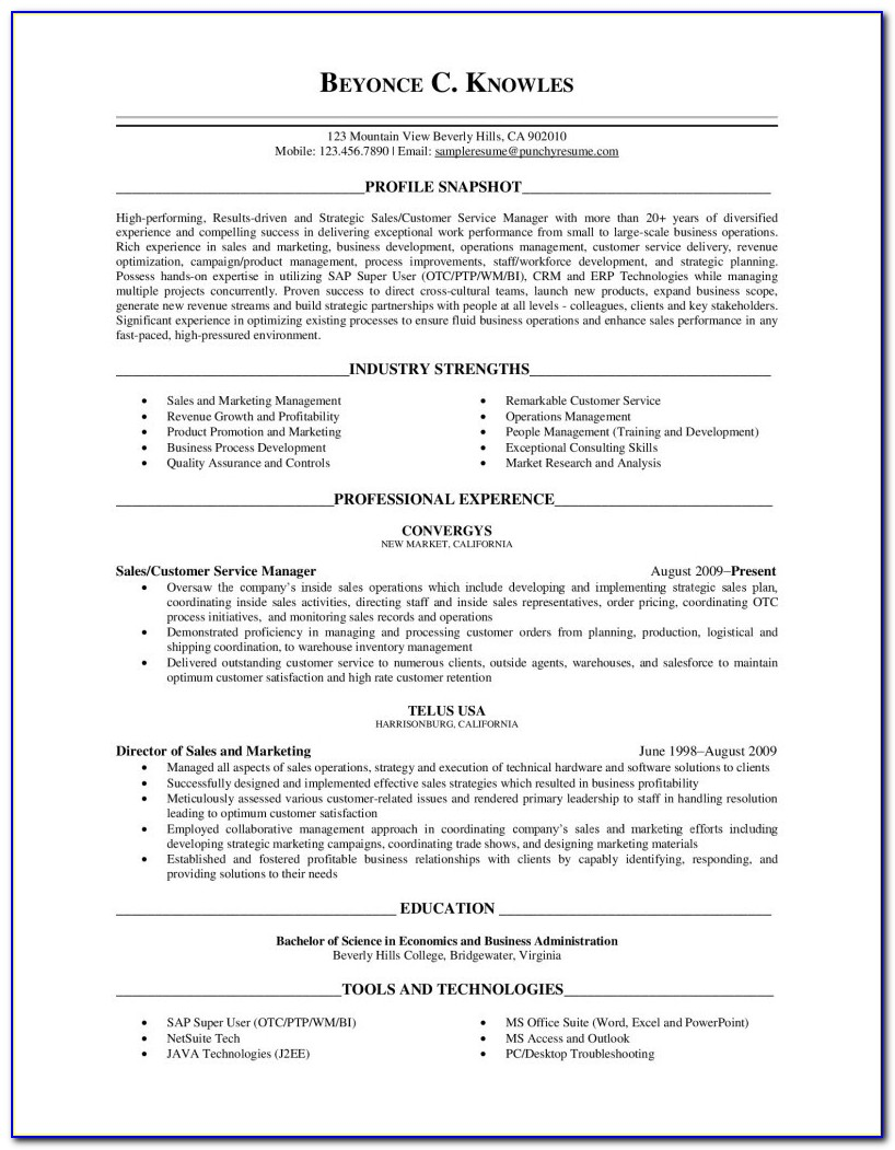 Executive Level Resume Free Resume Review Free Resume Templates Professional Resume Writers Resume Maker Resume