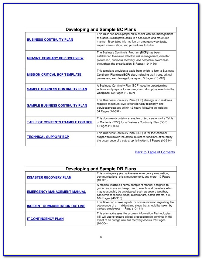 Saas Business Continuity Plan Template