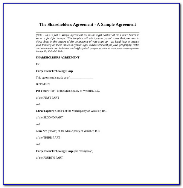 Sample Shareholders Agreement New York