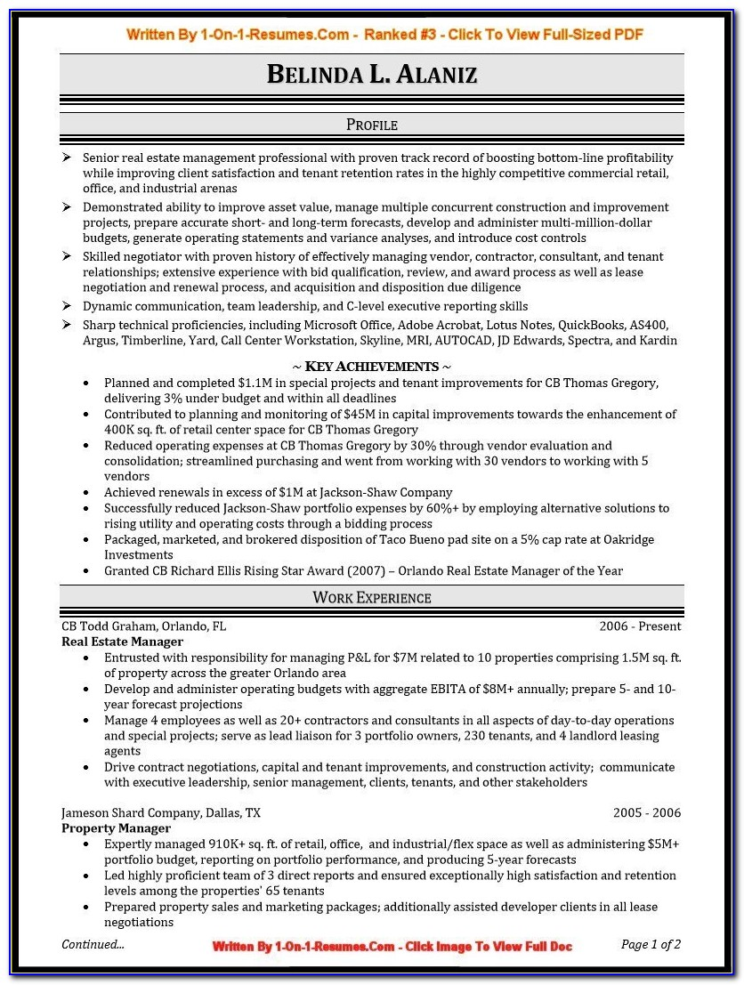 Samples Of Professional Resume Writing