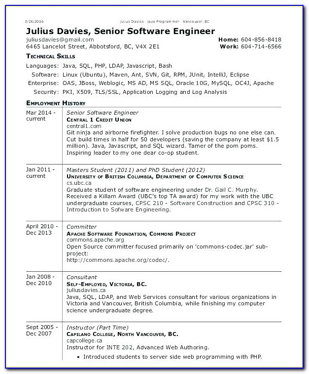 Software Cv Template Free Download
