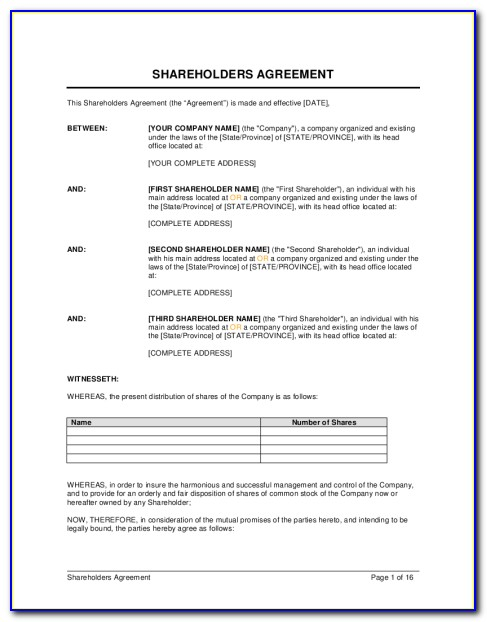 Template Shareholders Agreement Uk