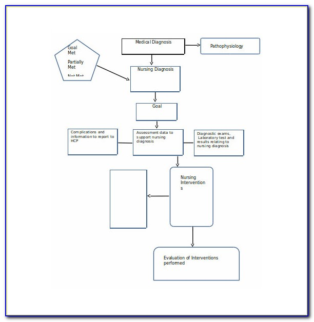 Clinical Concept Map Template