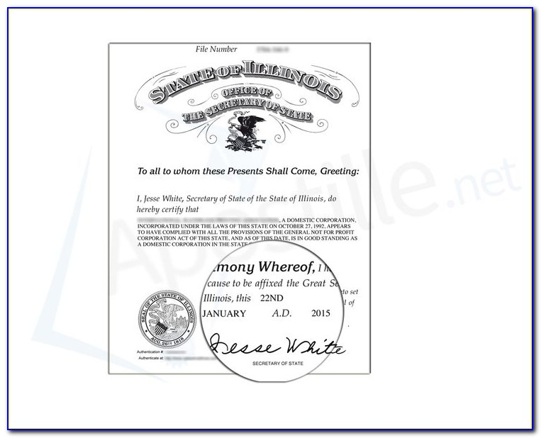 Dupage County Health Department Birth Certificate