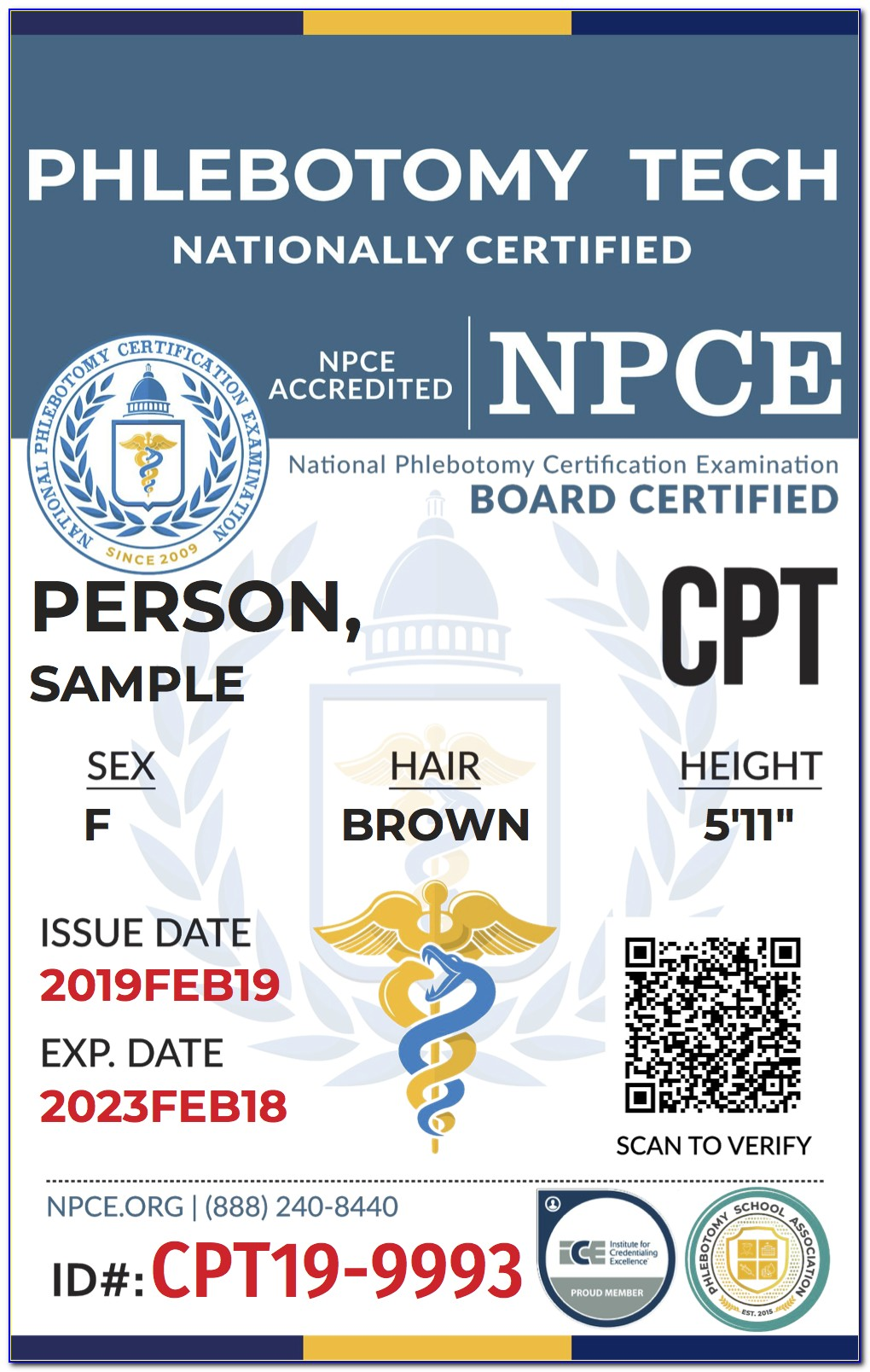 National Phlebotomy Certification Exam Cost