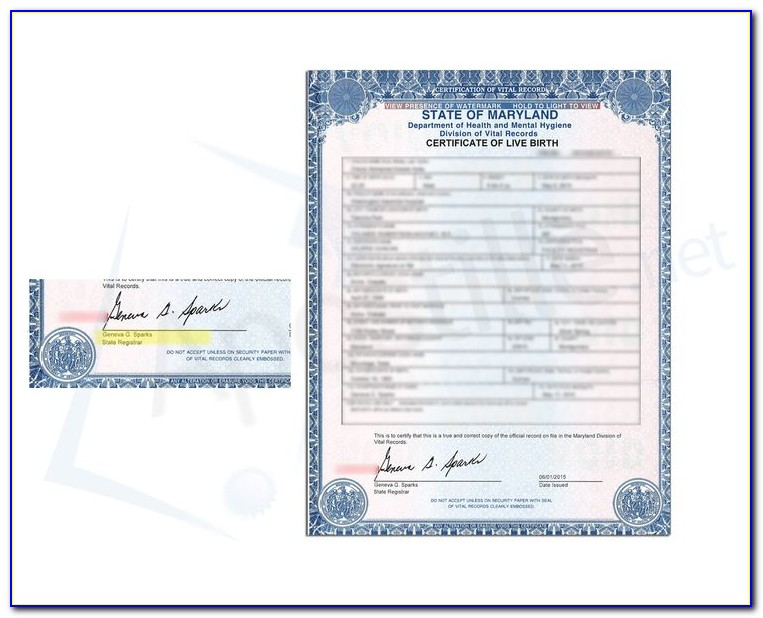 New York City Office Of Vital Records Birth Certificate Application