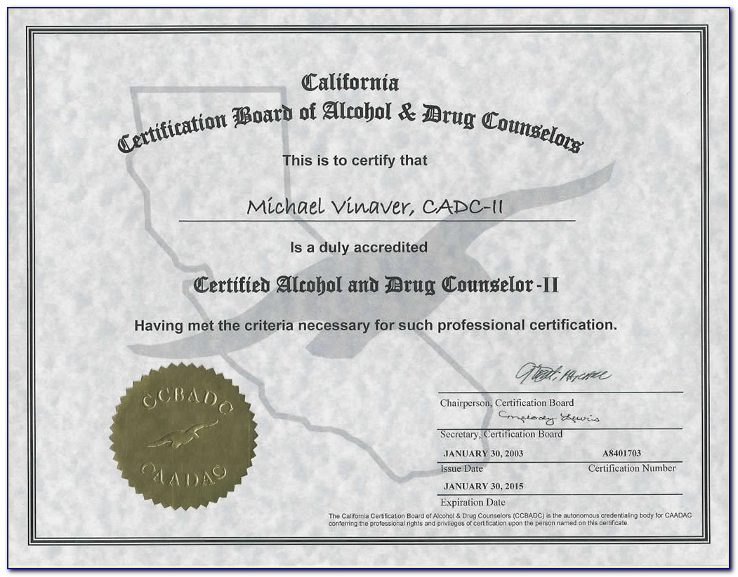 New York State Drug Counselor Certification