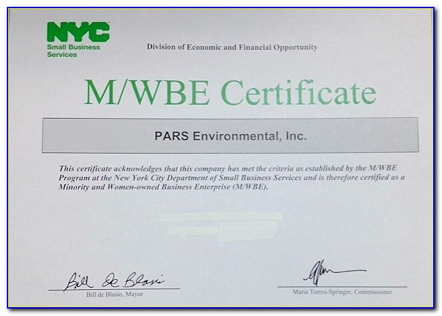 Nyc Wbe Certification Requirements