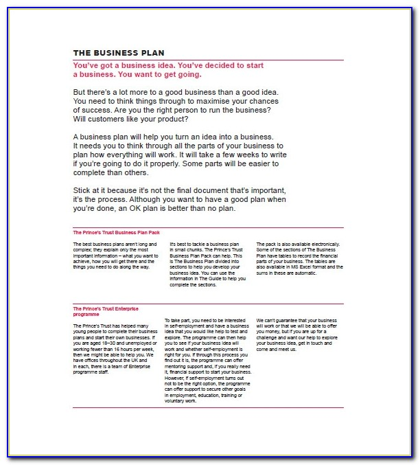 Business Plan Template For Mac 8 Free Word Excel Pdf Format Princess Trust Business Plan Template Princess Trust Business Plan Template