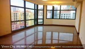 Riverplace @ Havelock Road Penthouse for Sale and Rent call 6598531741