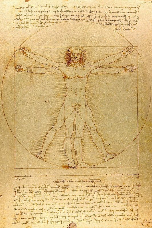 The Vitruvian Man (c. 1485) Accademia, Venice