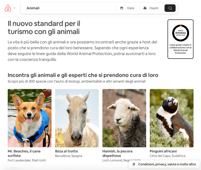 Airbnb-Animali-Partnership-WAP