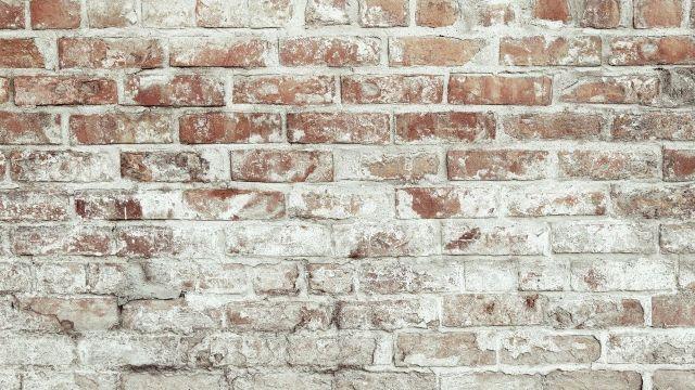 Efflorescence Test on Bricks