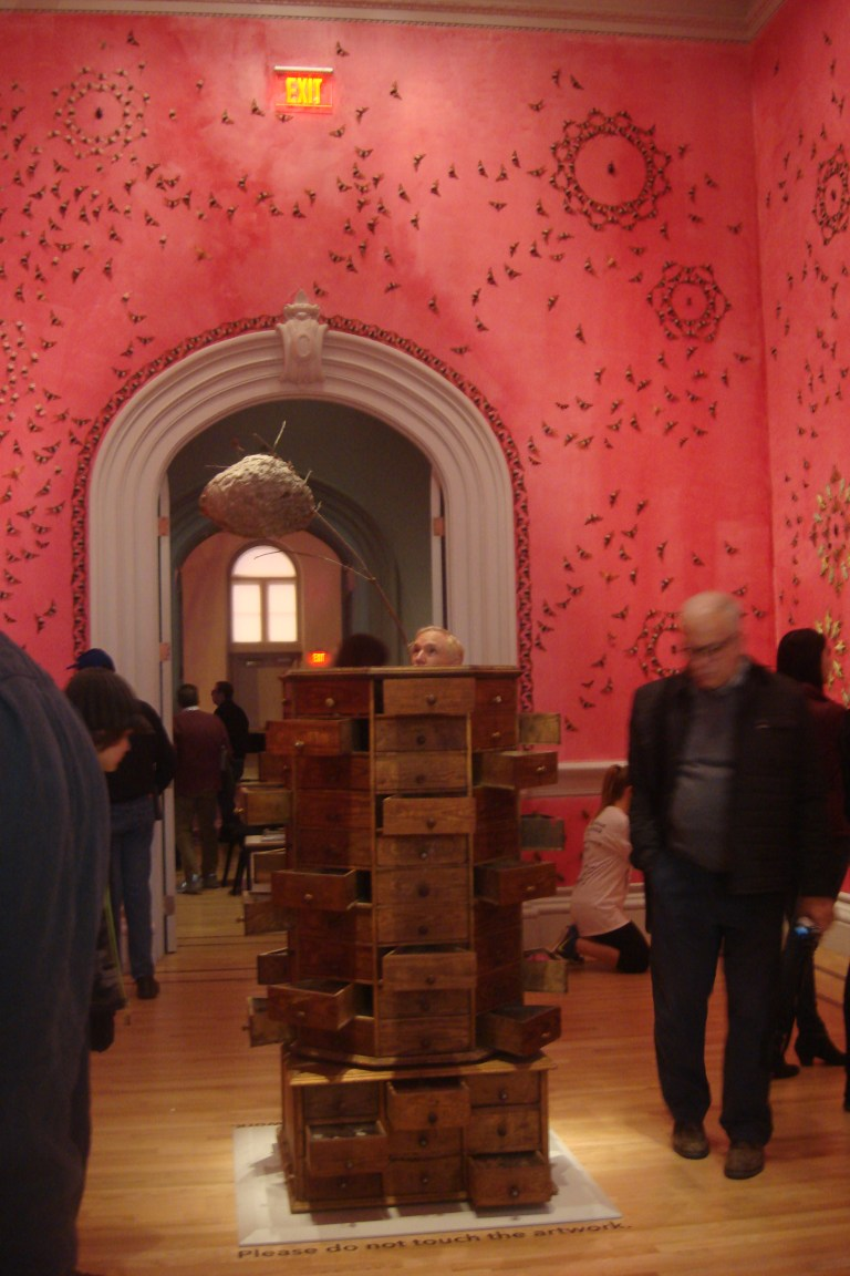 Jennifer Angus, Wonder, the Renwick, Smithsonian, DC 2015-18