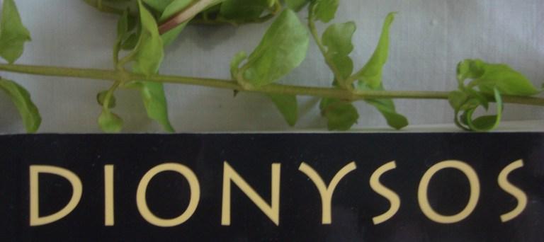 dionysos-2