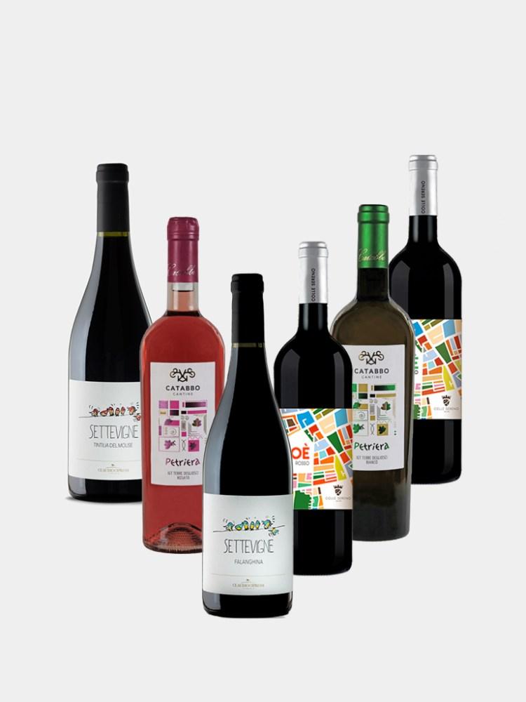 Vine and Soul Organic Wine Case