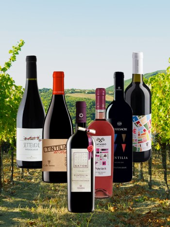Tintilia Case Molise Wine