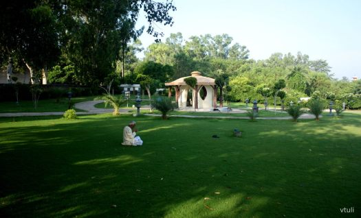 Lush Green Surroundings - Japanese Garden Chandigarh