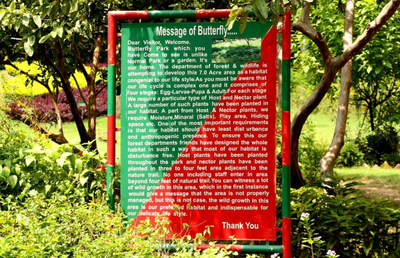 Message of A Butterfly - Butterfly Park Chandigarh