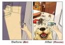 Как меняется жизнь человека после появления у него собаки.