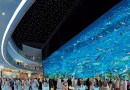 Лучшим торговым центром в этом году признан Dubai Mall.