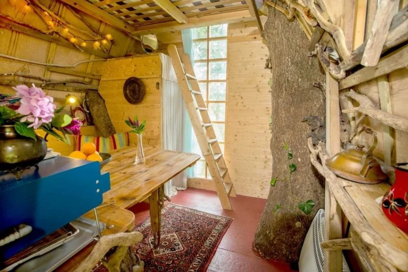 etot domik na dereve neveroyatno populyaren sredi polzovatelej airbnb_vinegret (3)