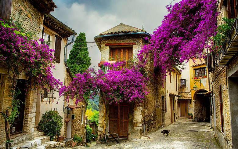 fairy-tale-villages-vinegret (8)