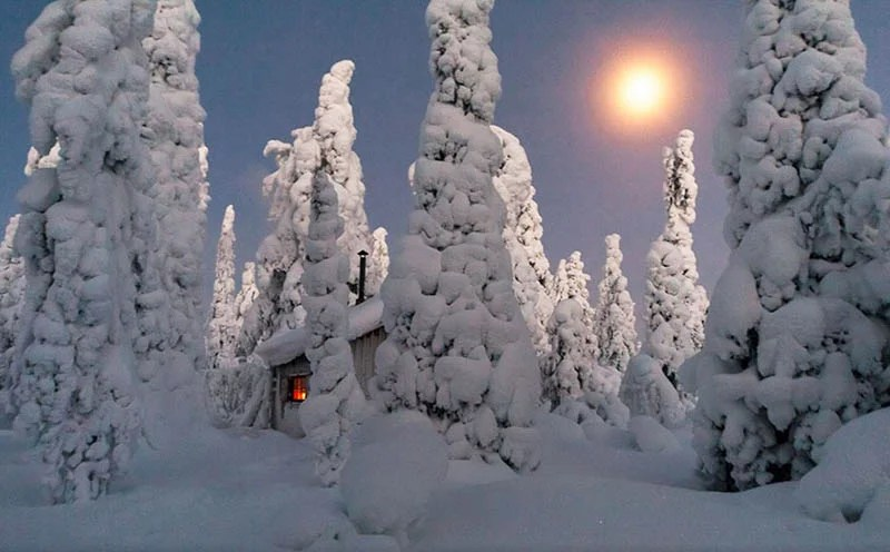 cozy-cabins-in-the-woods-vinegret (11)