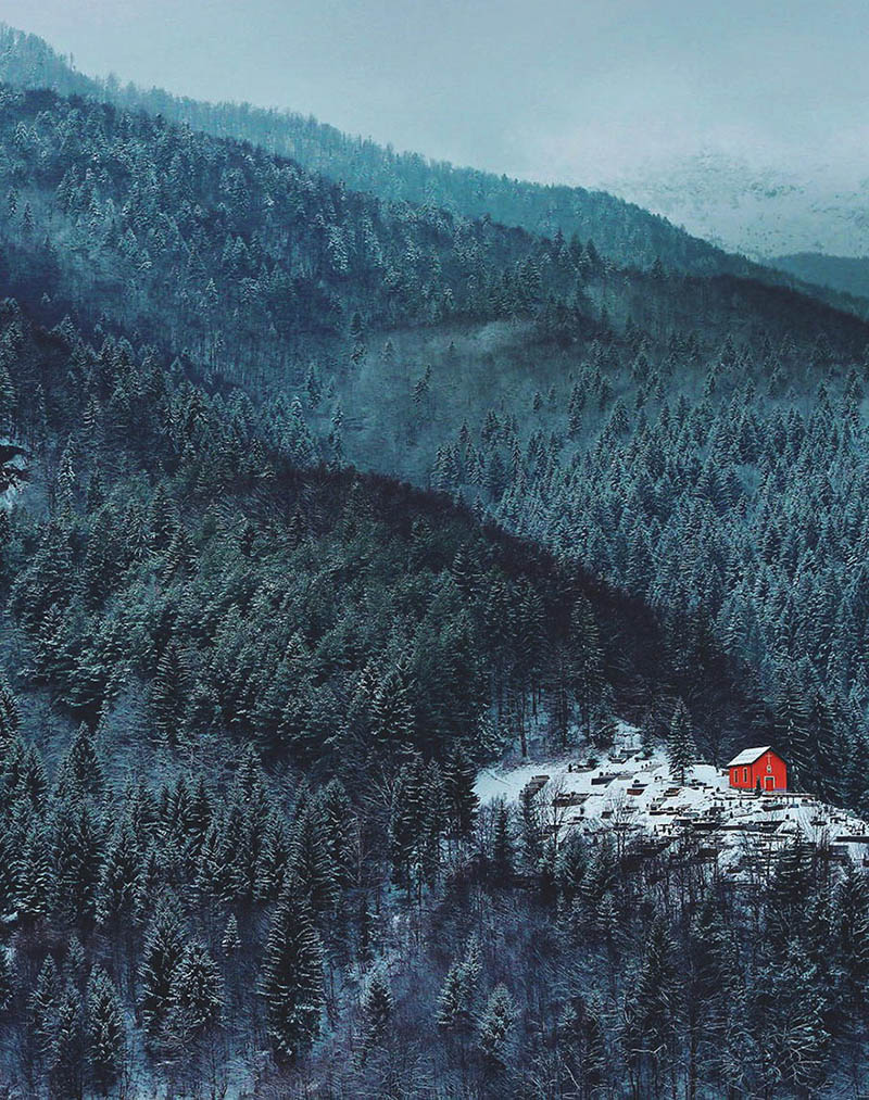 cozy-cabins-in-the-woods-vinegret (2)