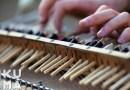 Видео: Изобретатель Сэми Элу собрал музыкальный инструмент из палочек для еды.