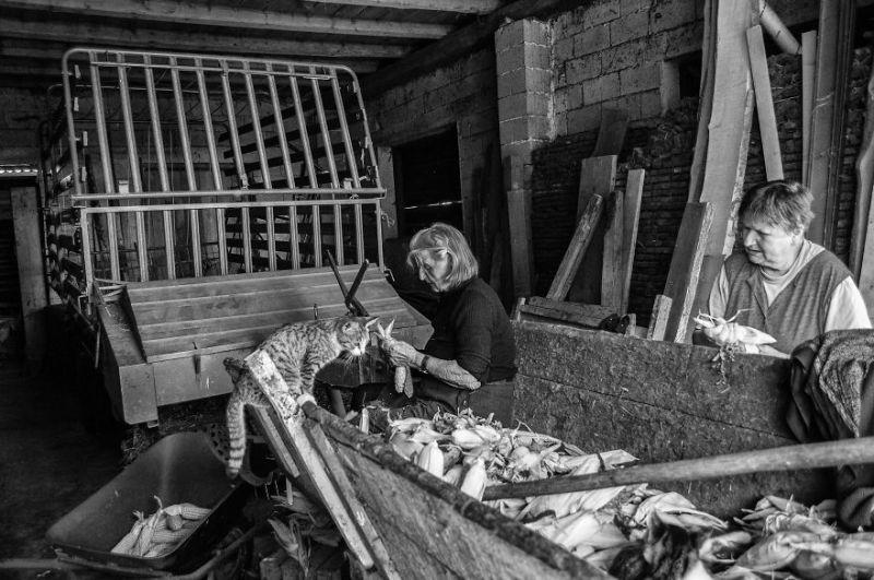 fotograf-pokazala-odin-den-iz-zhizni-svoej-babushki-vinegret-28