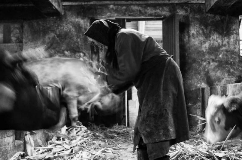 fotograf-pokazala-odin-den-iz-zhizni-svoej-babushki-vinegret-35