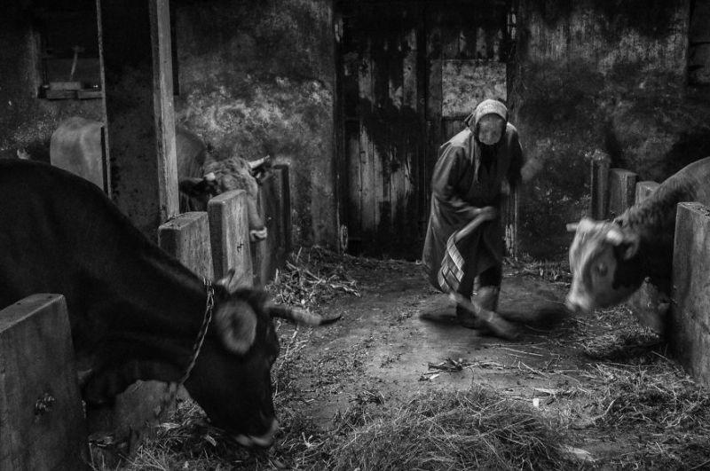 fotograf-pokazala-odin-den-iz-zhizni-svoej-babushki-vinegret-37