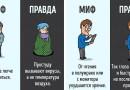 Мифы и правда о человеческом теле в забавных иллюстрациях.