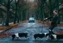 Компания Volvo выпустила ну уж очень «добрый» рекламный ролик. [Видео]