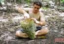 Видео: Изготовление ловушки для креветок из тростниковых палочек.