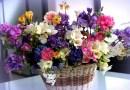 Покупка свежих цветов в интернете. [Реклама]