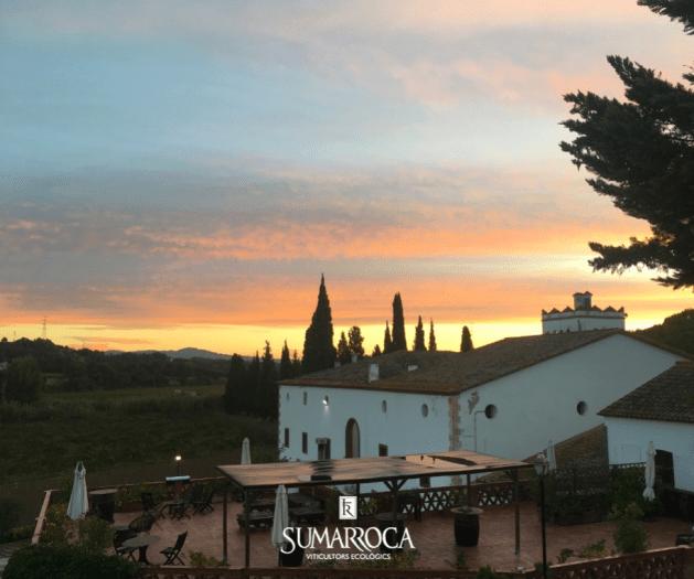 Domaine, chai et vignoble Sumarroca