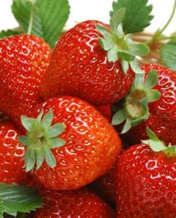 Dau-tay-Uc-nhap-khau-Vinfruits.com