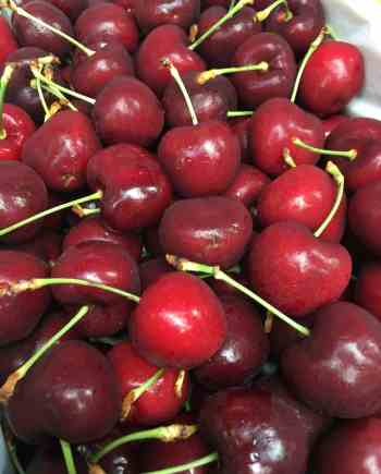Cherry-Jumbo-Cherry-New-Zealand-vinfruits.com
