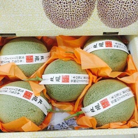Dưa lưới Nhật Bản - Vinfruits.com
