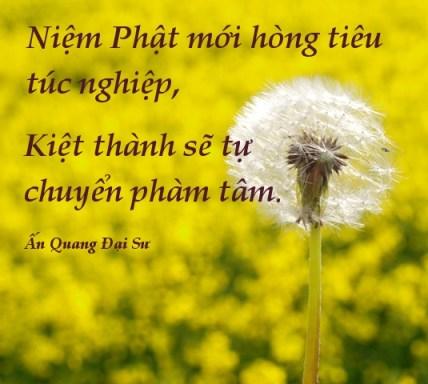 Niem-Phat-tieu-tuc-nghiep-An-Quang-Dai-Su