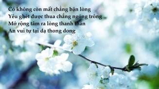 thong dong