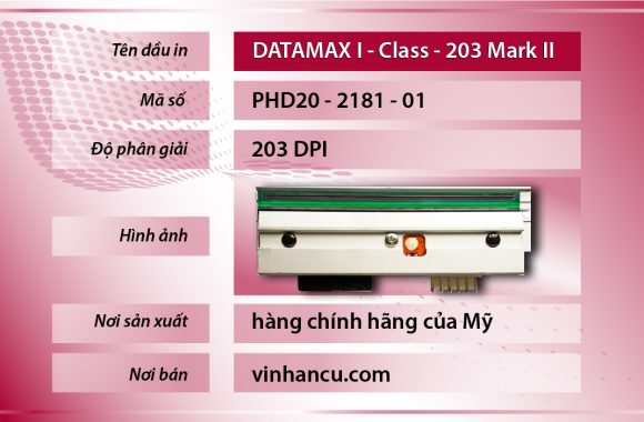 Đầu In Datamax-O'Neil I-Class I-4212E Mark II