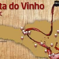 Rota do Vinho Catarinense: Vinícolas de portas abertas para o enoturismo